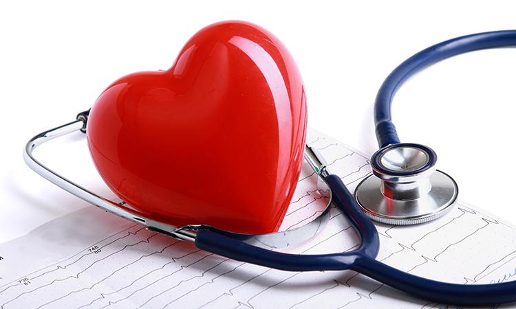Hỗ trợ tốt cho sức khỏe tim mạch