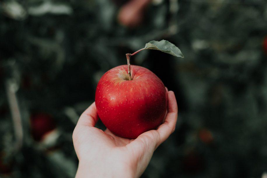 Tác dụng của quả táo hỗ trợ ngăn ngừa ung thư