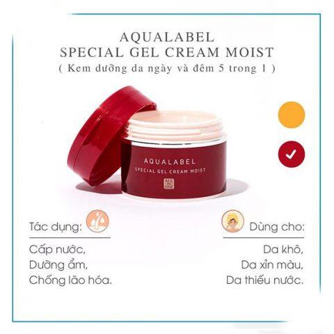 Kem dưỡng da ban đêm Shiseido Aqualabel Special Gel Cream màu đỏ