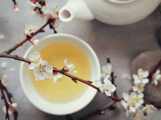 8 loại trà giảm mỡ bụng từ thiên nhiên giúp bạn thanh lọc cơ thể từ trong ra ngoài