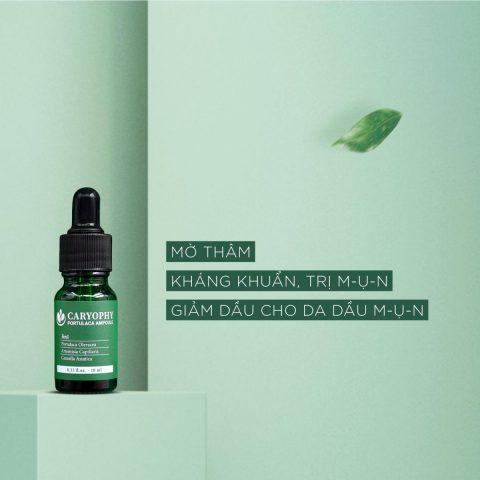 serum trị mụn Hàn Quốc Caryophy Portulaca Ampoule cho da dầu